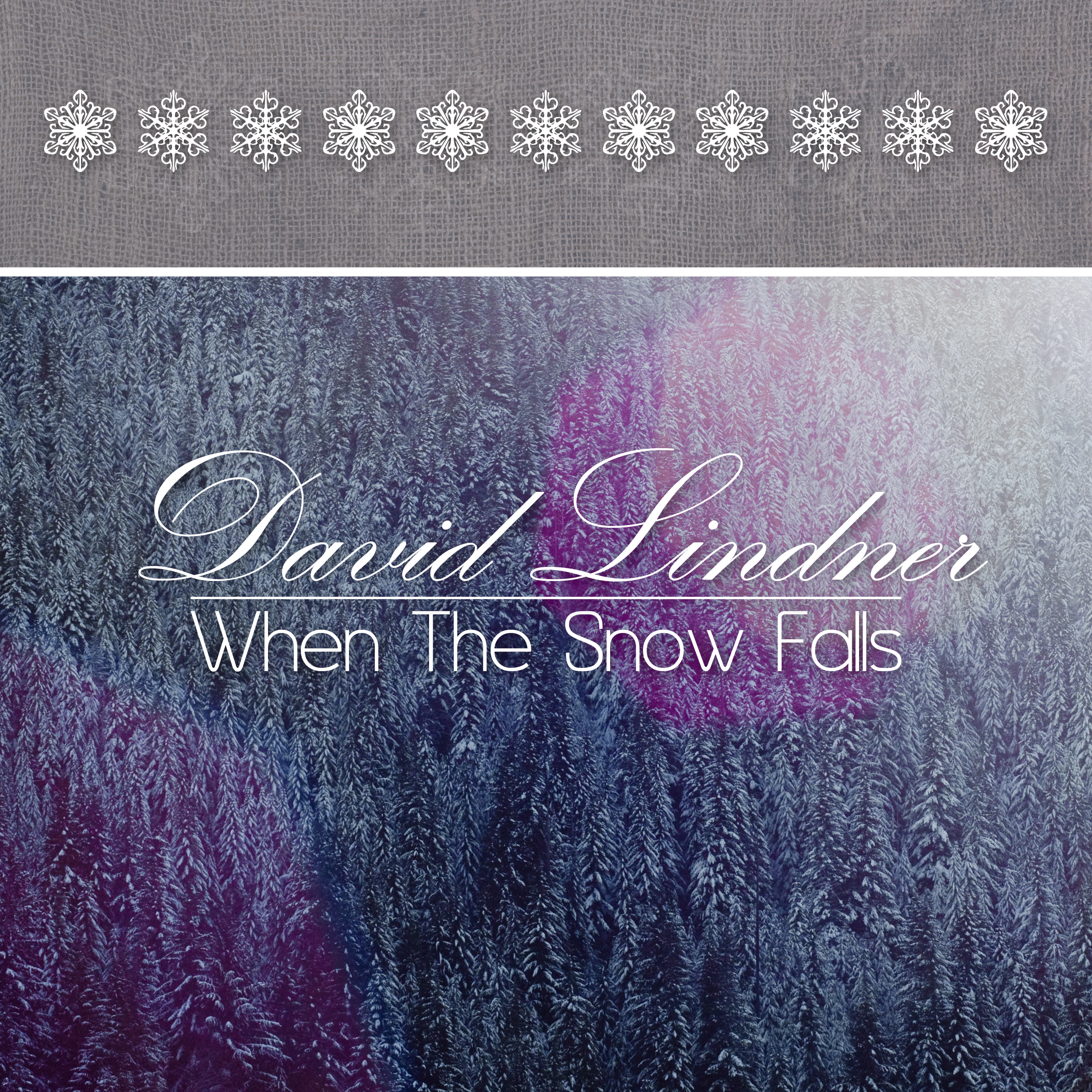When The Snow Falls – A Full Length Christmas Album by David Lindner