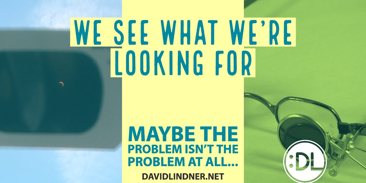 We See What We're Looking For