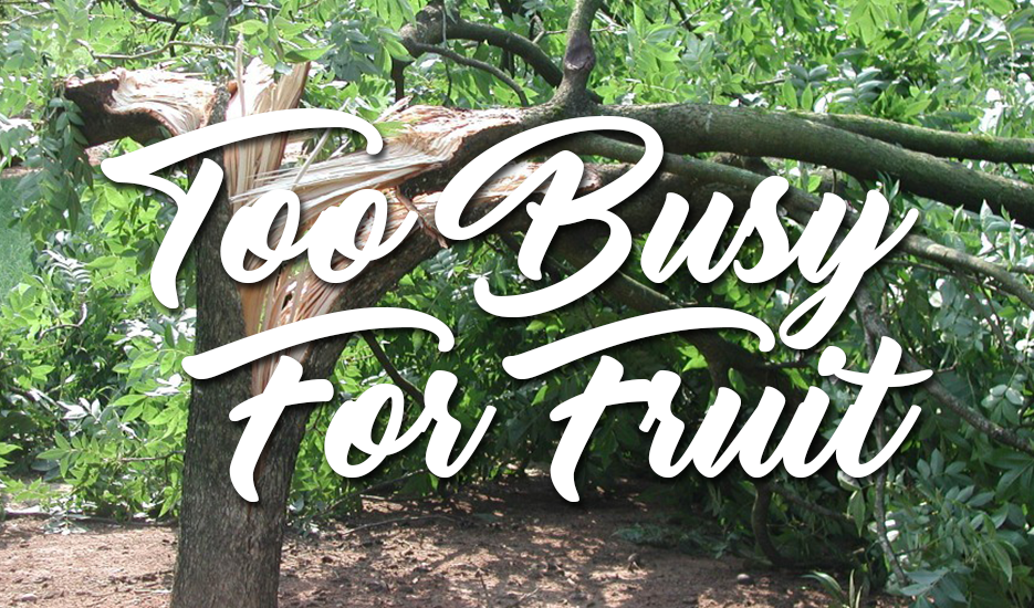 Too Busy For Fruit