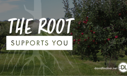 The Root Supports You